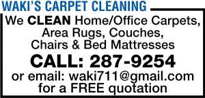 Wakis Carpet Cleaning Web